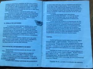 paginas 10 y 11
