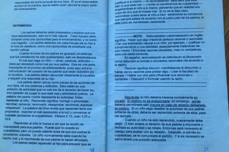 paginas 28 y 29