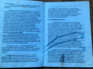 paginas 6 y 7
